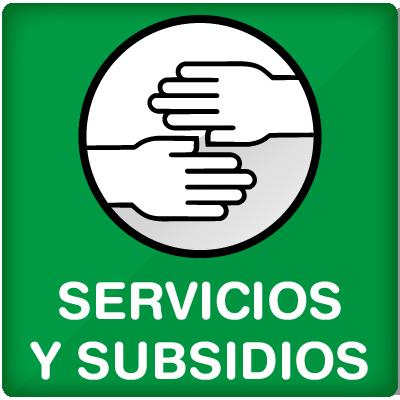 Servicios y subsidios