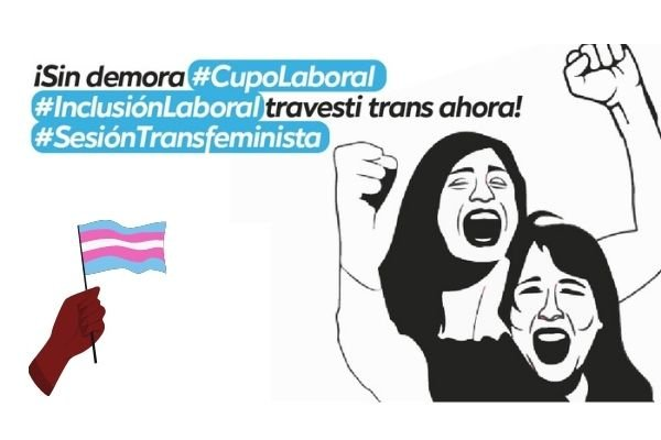 Celebramos la media sanción del proyecto de Cupo e Inclusión Laboral Travesti Trans